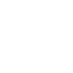 2016: Top Customer Service Provider